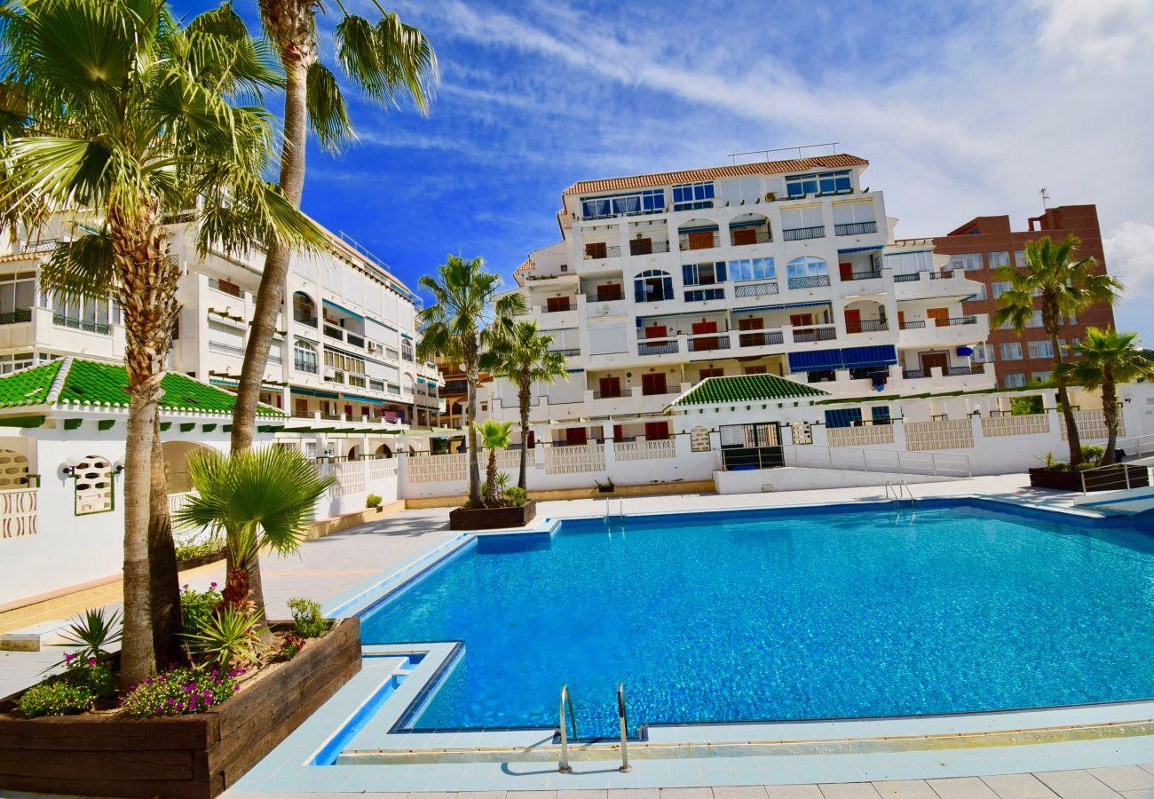 Ferienwohnung in La Mata - 039 All Year Sun & Pool / AC - Wifi
